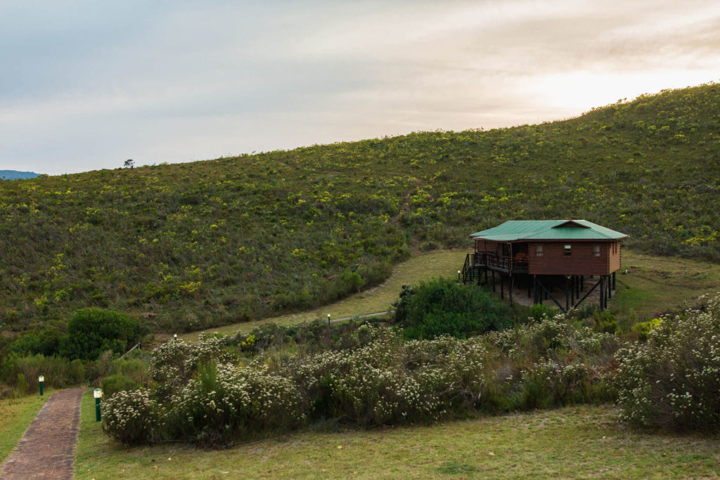 Mpunzi Log Cabin from a distance